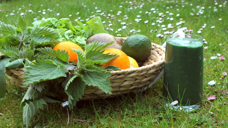Fastenhof - Grüner Smoothie auf Wiese